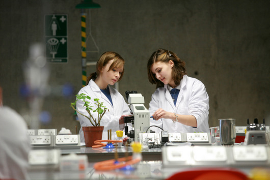 Followingare the subjects in Biology they master at completely:-